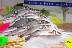 Fisken visade på fisk- och matståndet arkivbilder