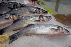 Fisken visade på fisk- och matståndet arkivfoton
