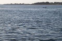 Fisker Στοκ εικόνες με δικαίωμα ελεύθερης χρήσης