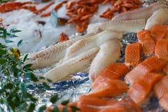 Fiskfiléer på is royaltyfria foton