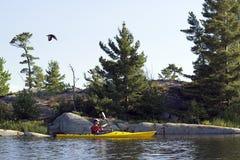 Fiskgjuse och Kayaker - Lake Huron arkivfoton