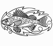 Fiskhalskrage Royaltyfri Fotografi