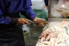 Fiskhandlaren öppnar en ostron Kyoto Japan Arkivfoto