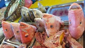Fiskhuvud i marknaden Arkivfoton