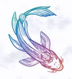 FiskKoi f?r hand utdragen etnisk karp - symbol av harmoni, vishet Isolerad vektorillustration Andlig konst f?r tatuering royaltyfri illustrationer