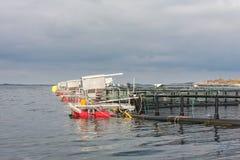 Fisklantbruk i burar Arkivfoto