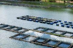 Fisklantgård Arkivbilder