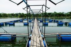 Fisklantgård för öppet vatten Arkivbilder