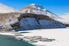 Fisklantgård i den djupfrysta sjön Arkivfoton