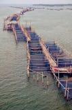 Fisklantgård thailand Fotografering för Bildbyråer