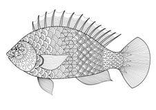 Fisklinje konstzentanglestil för färgläggningboken för vuxna människan, tatuering, logo, t-skjortadesign, beståndsdel för design  Arkivfoto