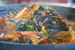 fiskmål Royaltyfri Fotografi