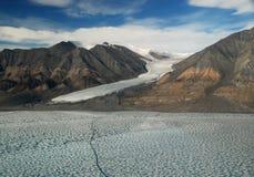 Fiskmåsglaciär av den Ellesmere ön royaltyfri foto