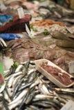 fiskmarknad Fotografering för Bildbyråer