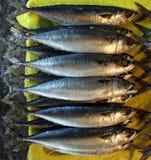 fiskmarknad Royaltyfria Foton
