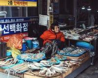 Fiskmarknad Busan, Sydkorea Royaltyfri Bild