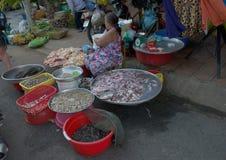 Fiskmarknad i Can Tho, Vietnam arkivfoto