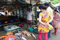 Fiskmarknad i Cochin (Kochin) av Indien Royaltyfri Bild