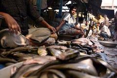 Fiskmarknad i lantliga Indien arkivfoton