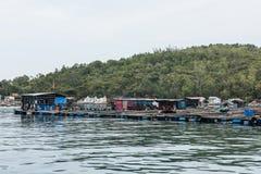 Fiskmarknad i Nha Trang Royaltyfri Fotografi