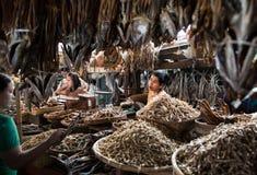 Fiskmarknad i Sittwe, Myanmar Royaltyfri Bild