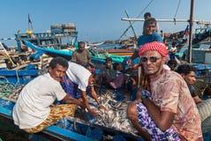 Fiskmarknad i Yemen Fotografering för Bildbyråer