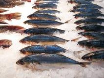 Fiskmarknad, mat Arkivfoton