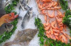 Fiskmarknad - materielbild Royaltyfri Bild