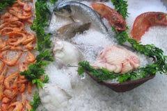 Fiskmarknad - materielbild Arkivfoto