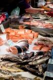 Fiskmarknad, ny fisk i gatamarknad, ny fisk, social fråga, marknad för fiskmarknadsgata royaltyfria foton