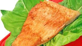 Fiska maträtten Royaltyfri Bild