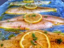 Fiskmatställe Royaltyfri Foto