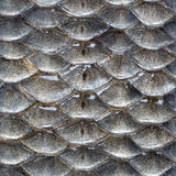 fiskmodellen skalar seamless Royaltyfria Bilder