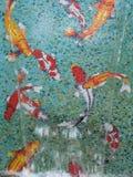 Fiskmosaik Royaltyfri Bild