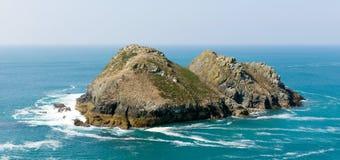 Fiskmåsen vaggar den Holywell fjärden norr Cornwall England Förenade kungariket nära Newquay Arkivbild