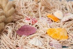 Fisknät på träbakgrund Fotografering för Bildbyråer