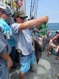 Fiskpölen väger in för pengarna Royaltyfri Foto