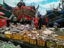 Fiskport arkivfoto