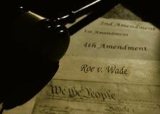 Fiskrom V vadar text med USA-konstitutionen royaltyfri bild