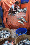 Fisksäljare i Mandalay Royaltyfri Foto