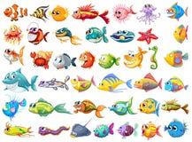 Fisksamling royaltyfri illustrationer