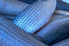 fiskscales Royaltyfria Foton