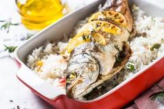 Fiskseabass som bakas med ris och grönsaker Arkivfoton