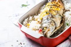 Fiskseabass som bakas med ris och grönsaker Royaltyfria Bilder