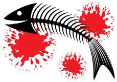 fiskskelett Arkivbilder