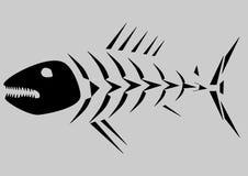 fiskskelett Arkivfoto