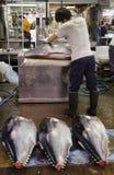 Fiskslaktare på den Tsukiji marknaden Royaltyfri Foto