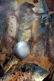 fiskstew Arkivfoto