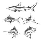 Fisksymboler Royaltyfri Illustrationer