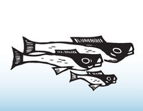 Fiskteckning Royaltyfri Bild